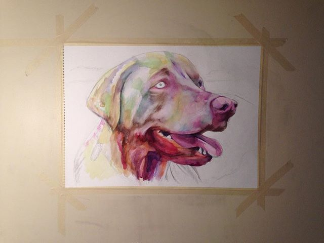 Work in progress  #art #dog #painting #watercolor