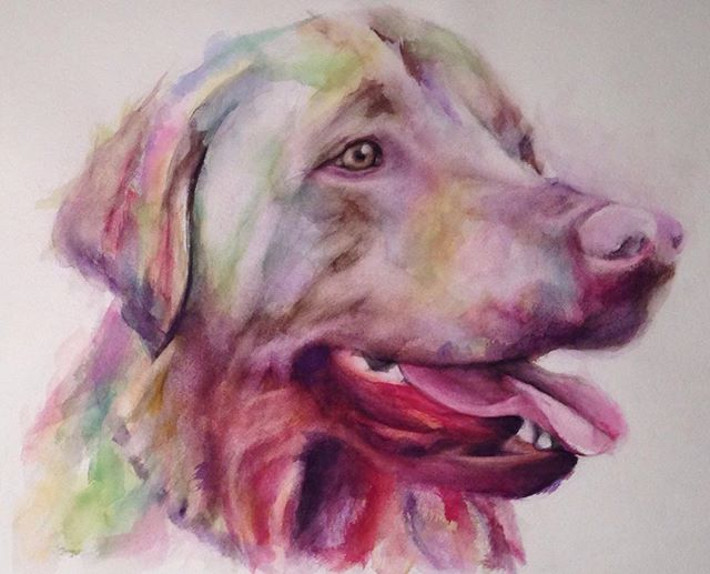 Finished up this yellow lab named Rah aka Mr. Matzoball for a very patient client. #art #watercolor #painting #artwork #yellowlab #lab #dog #abstract