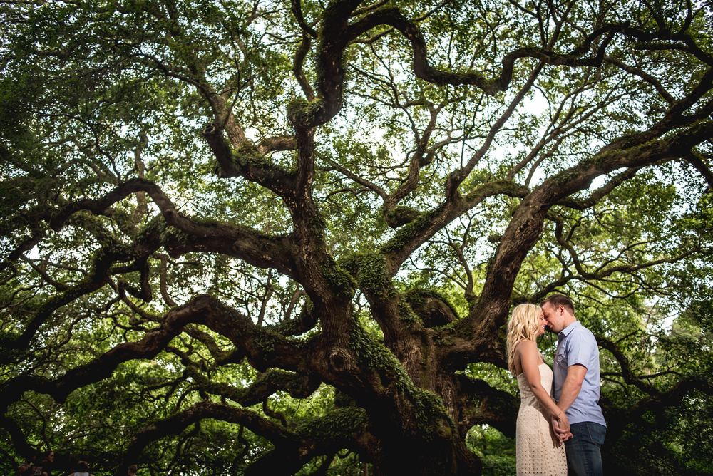 Andrea and Karl's Engagement session at angel oak tree in charleston south carolina