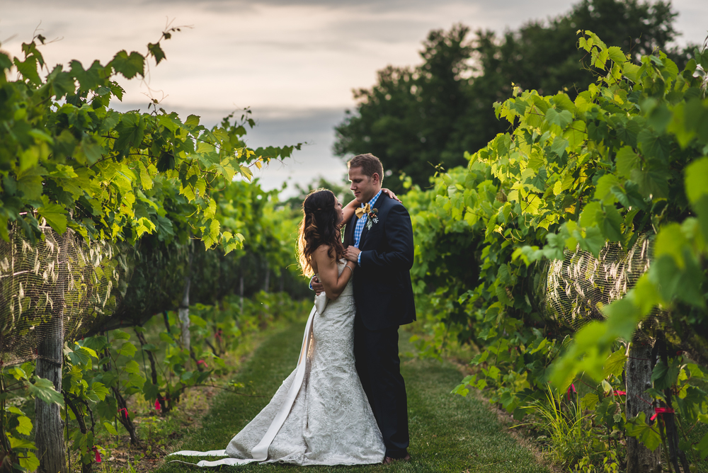 Gervasi Vineyard Wedding Ariel and Shawn