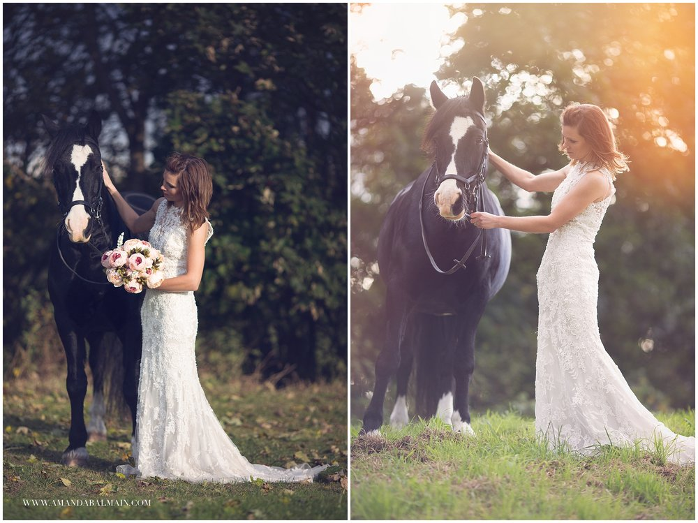 cheshire equine photographer