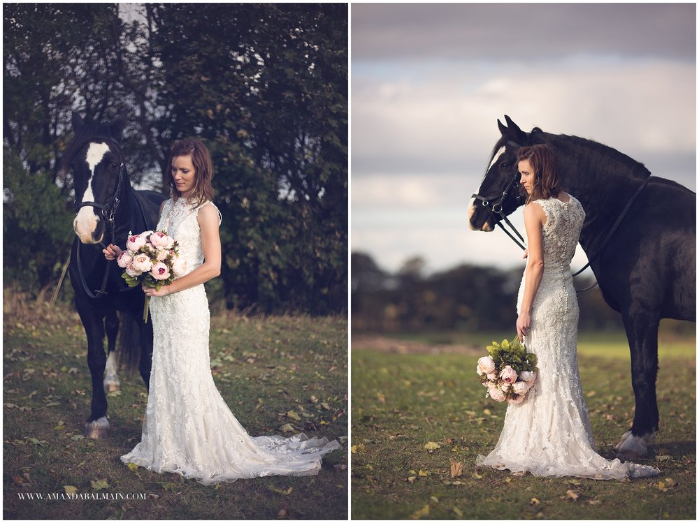Cheshire horse photography