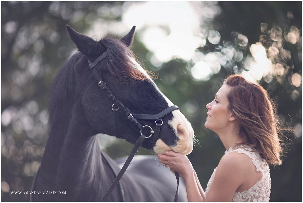horse and bride photography