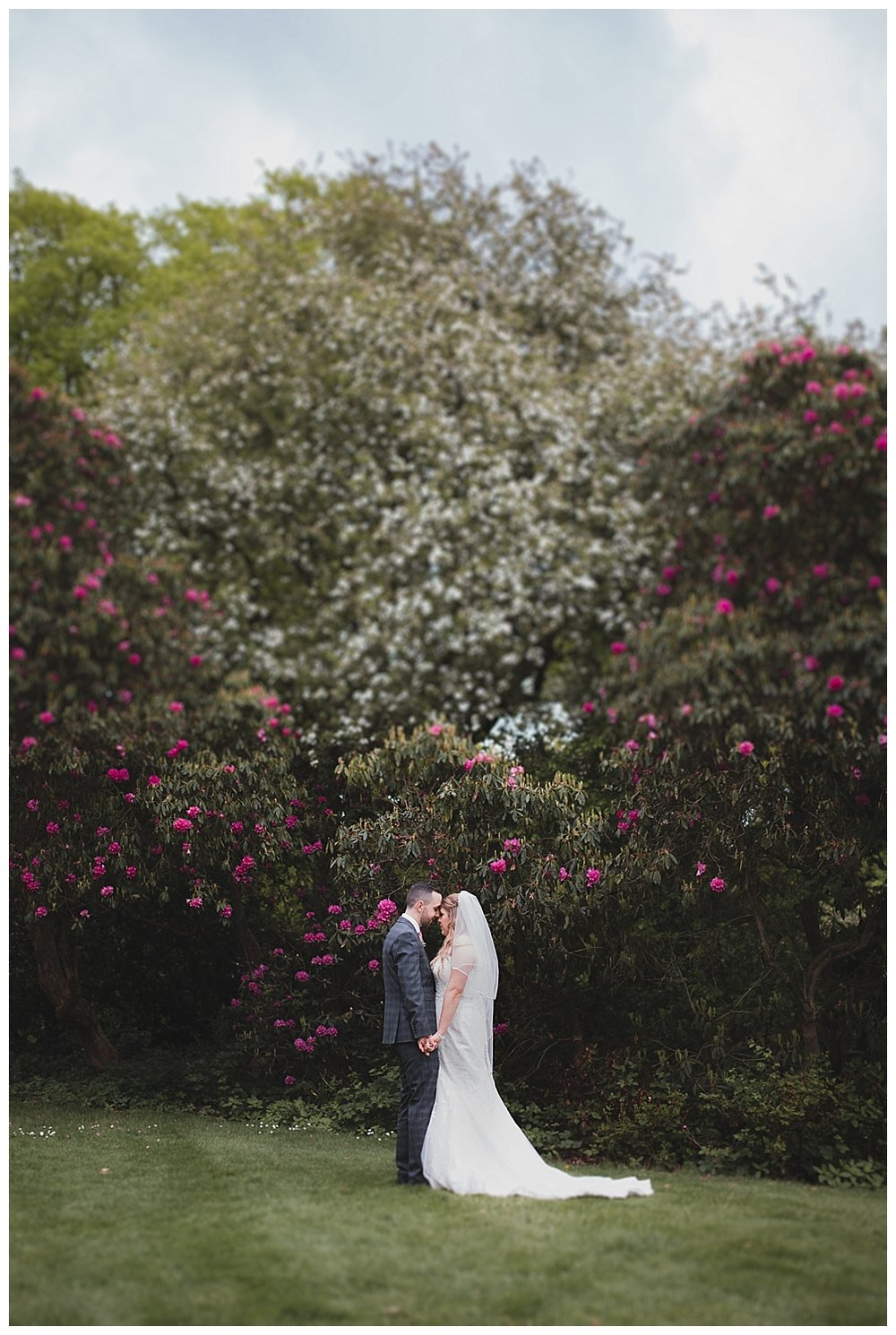 Bride and groom in front of the spectacular Rhododendrons at Keele Hall.