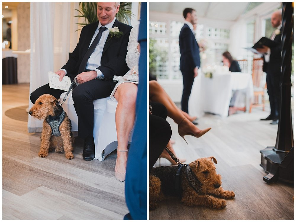 Bob the dog was not totally impressed by the ceremony.
