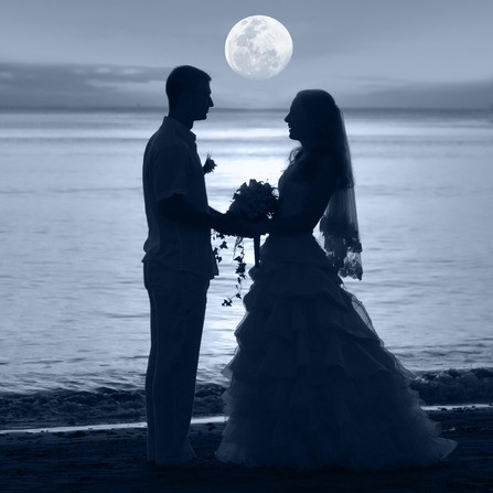 Silhouette of married couple by beach
