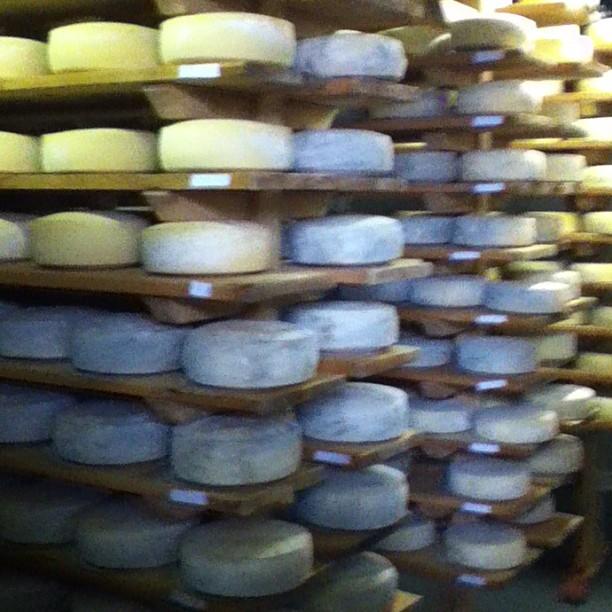 Cheese!! #tasteFriuli