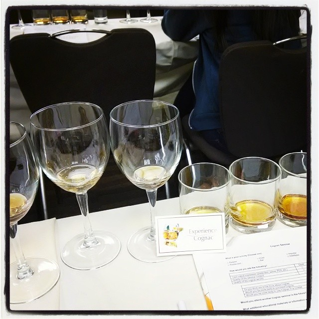 The view from here. Experience Cognac #PDXCW
