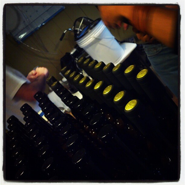 Bottling limoncello. They put us to work!! #bloomeryplantation