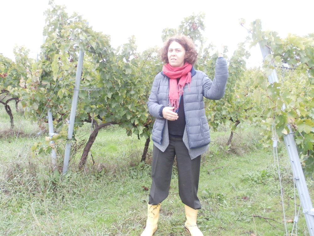Zeynap Arca Salliel of Arcadia Winery. She even holds light in her hand!