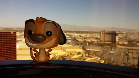 Hakuna matata  from our view at Rio with our travel buddy Timon.