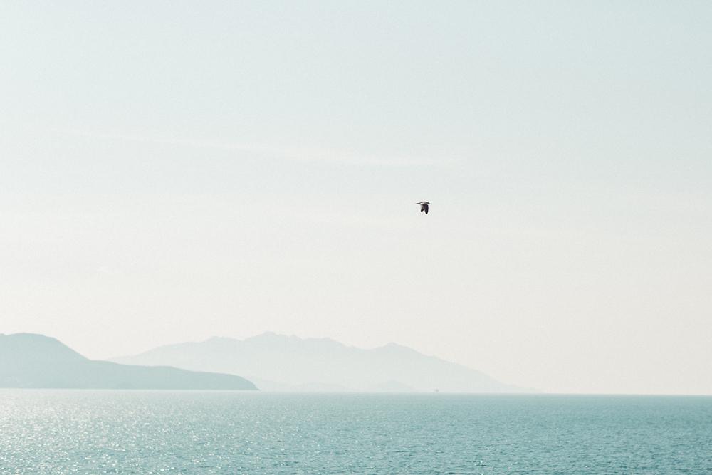 mehr Meer sehen.