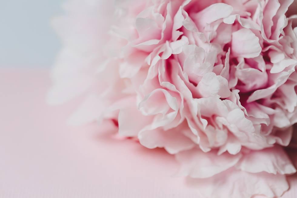 ...Blumen und Pastelltöne.