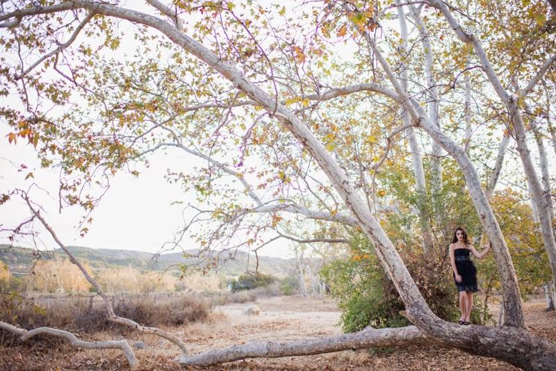 Lady in Black Dress & tree.jpg
