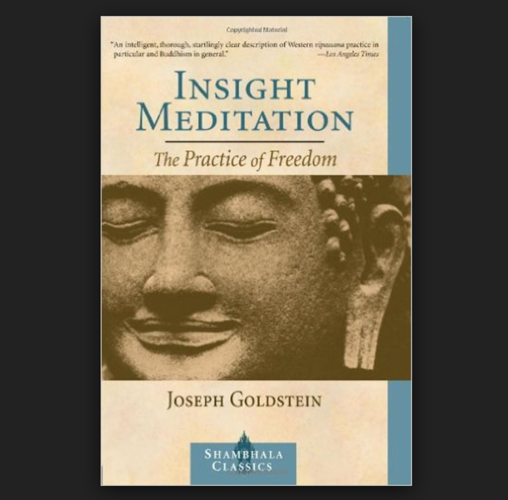 Insight Meditation - Joseph Goldstein