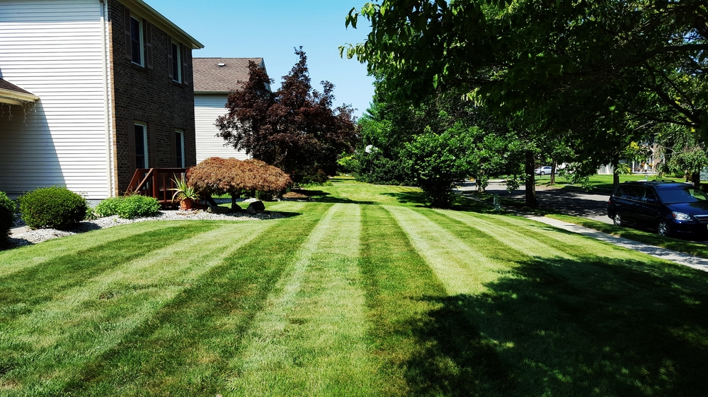 Lawn Maintenance in West Windsor New Jersey. Providing weekly lawn mowing services and fertilization and weed control to keep this lawn green and healthy.