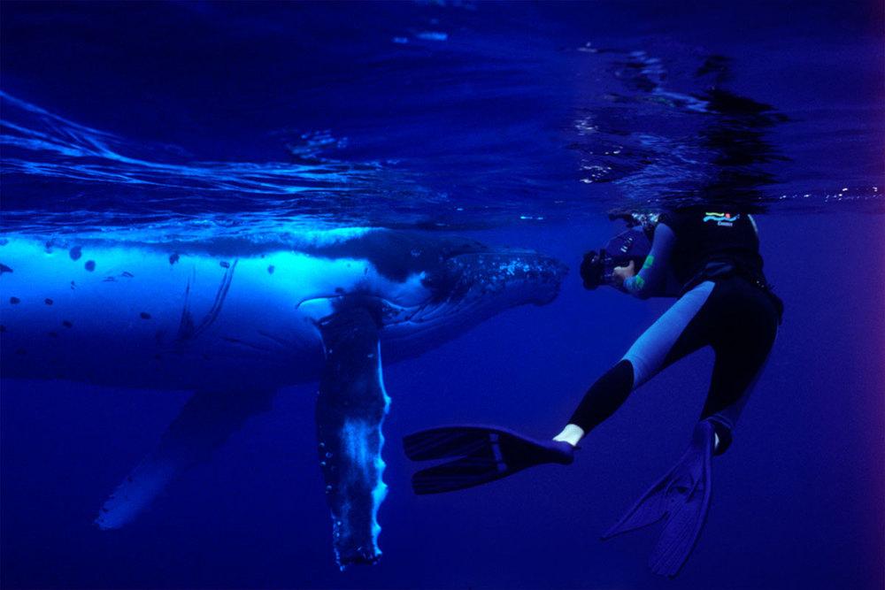 Andy-&-Whale.jpg