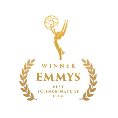 Emmy winner