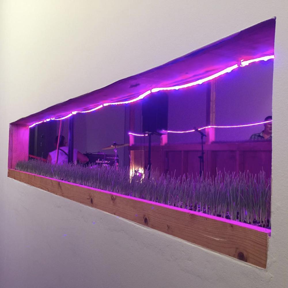 A peek into #Permacounterculture   @hamiltoniangallerydc  ! 🌱 🎶 #acreativedc   #bythings