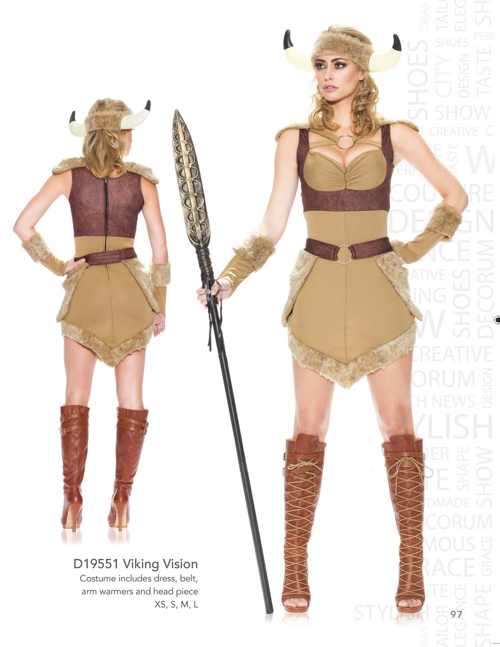 D19551 Viking Vision