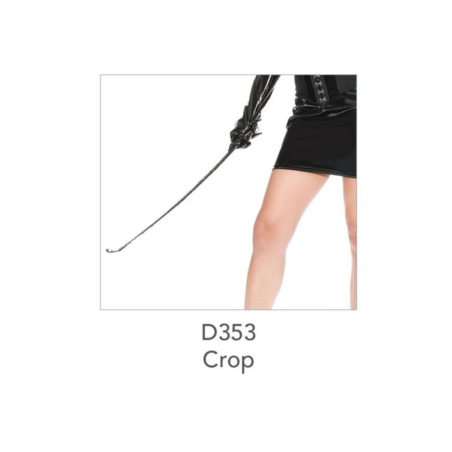 D353 Crop