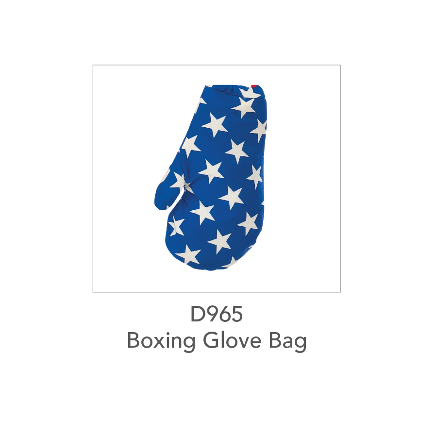 D965 Boxing Glove Bag