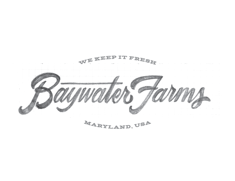 BaywaterFarms_LogoSketch_No1.png