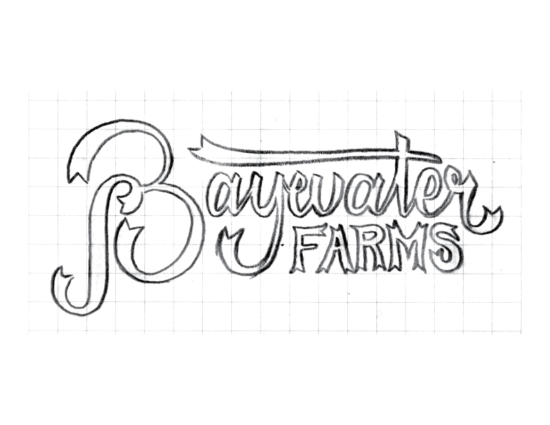 BaywaterFarms_LogoSketch_No4.png