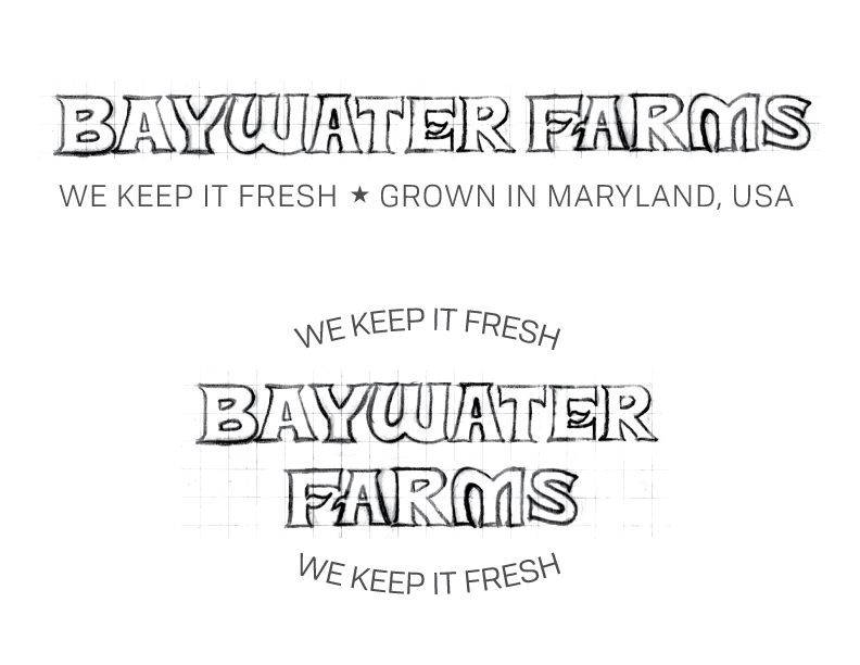BaywaterFarms_LogoSketch_No6.png