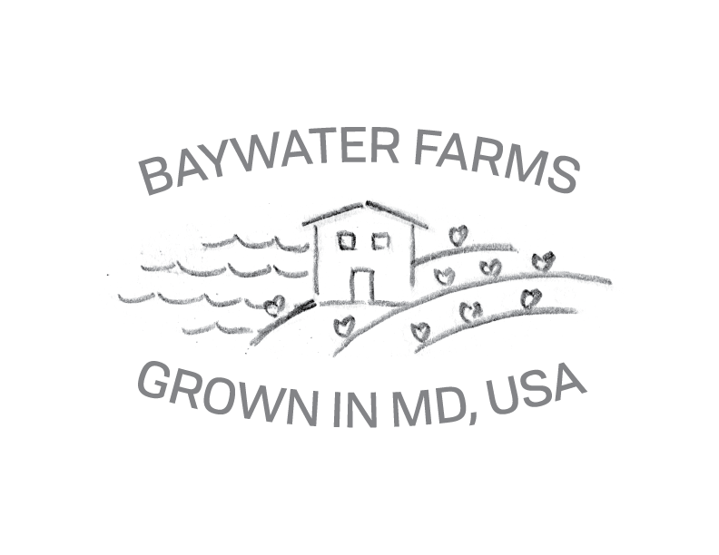 BaywaterFarms_LogoSketch_No8.png
