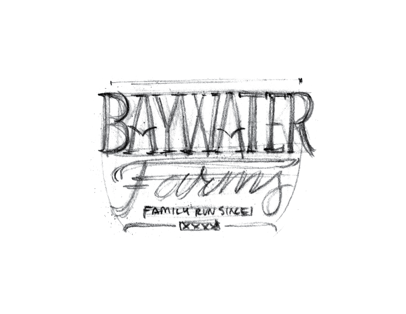 BaywaterFarms_LogoSketch_No11.png