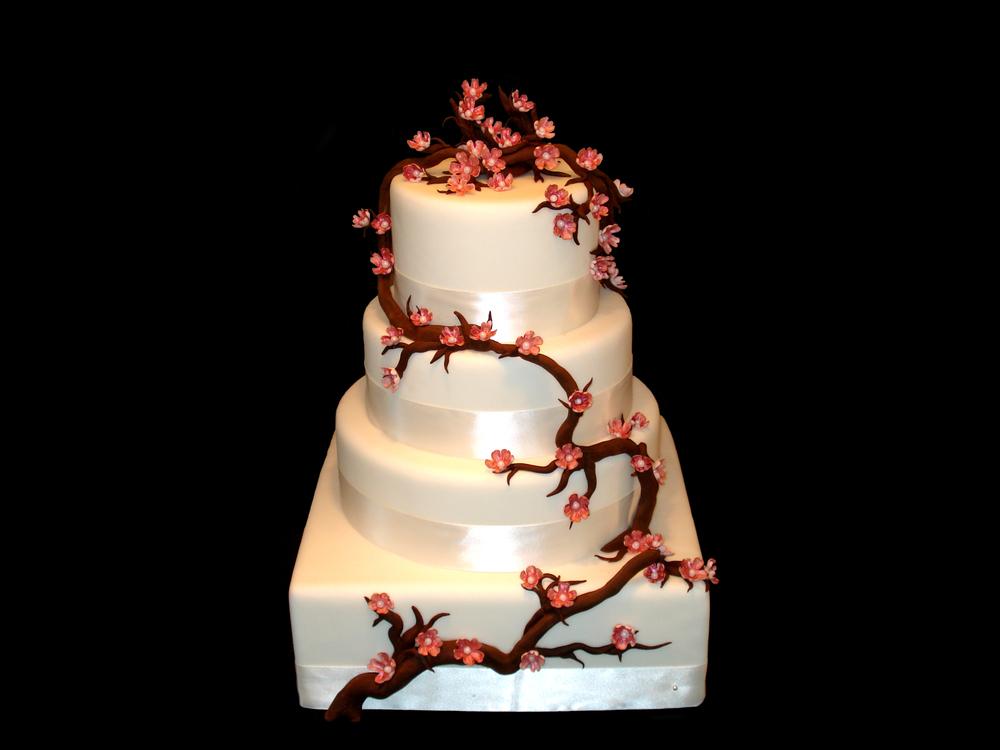xCherry Blossum Cake.jpg