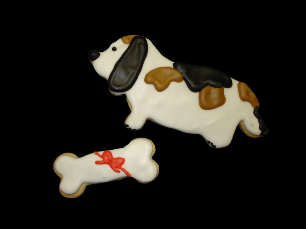 Cookie Dog and Bone.jpg