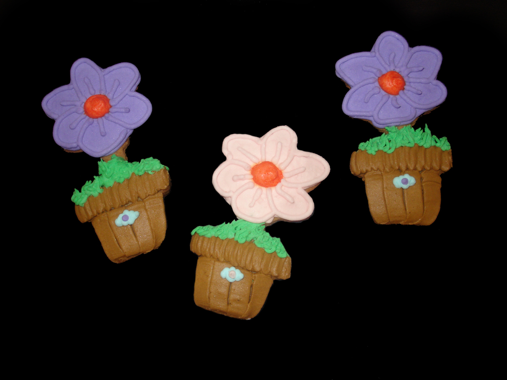 Cookie Flower Pots.jpg