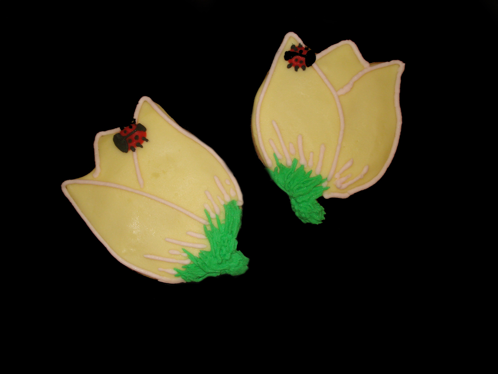 Cookie Flower Lady Bugs.jpg