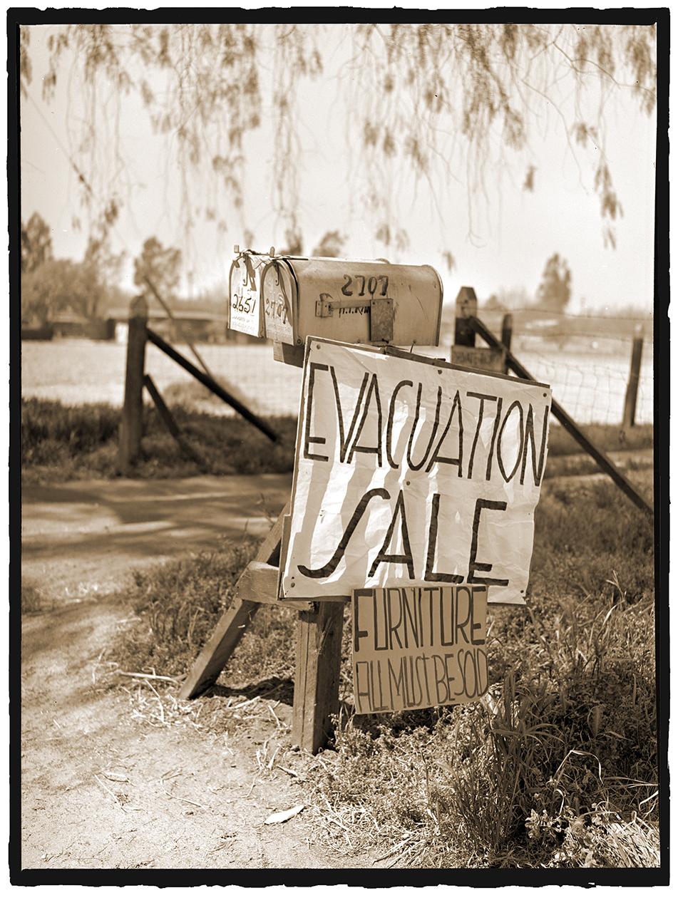 Evacuation Sale.jpg