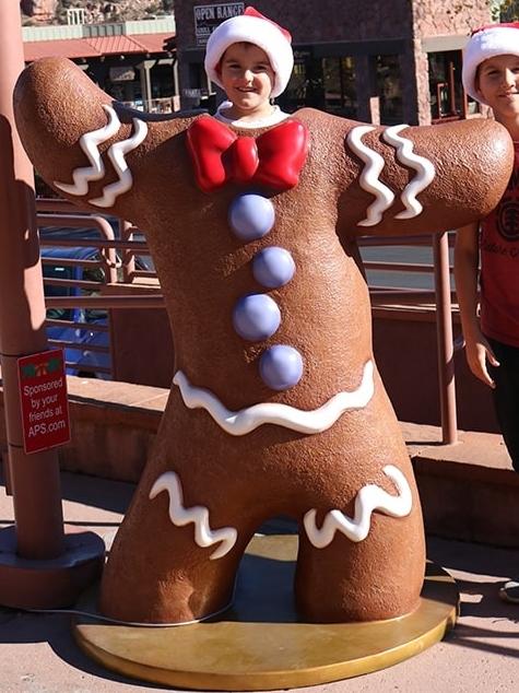 Gingerbread website jpg.jpg