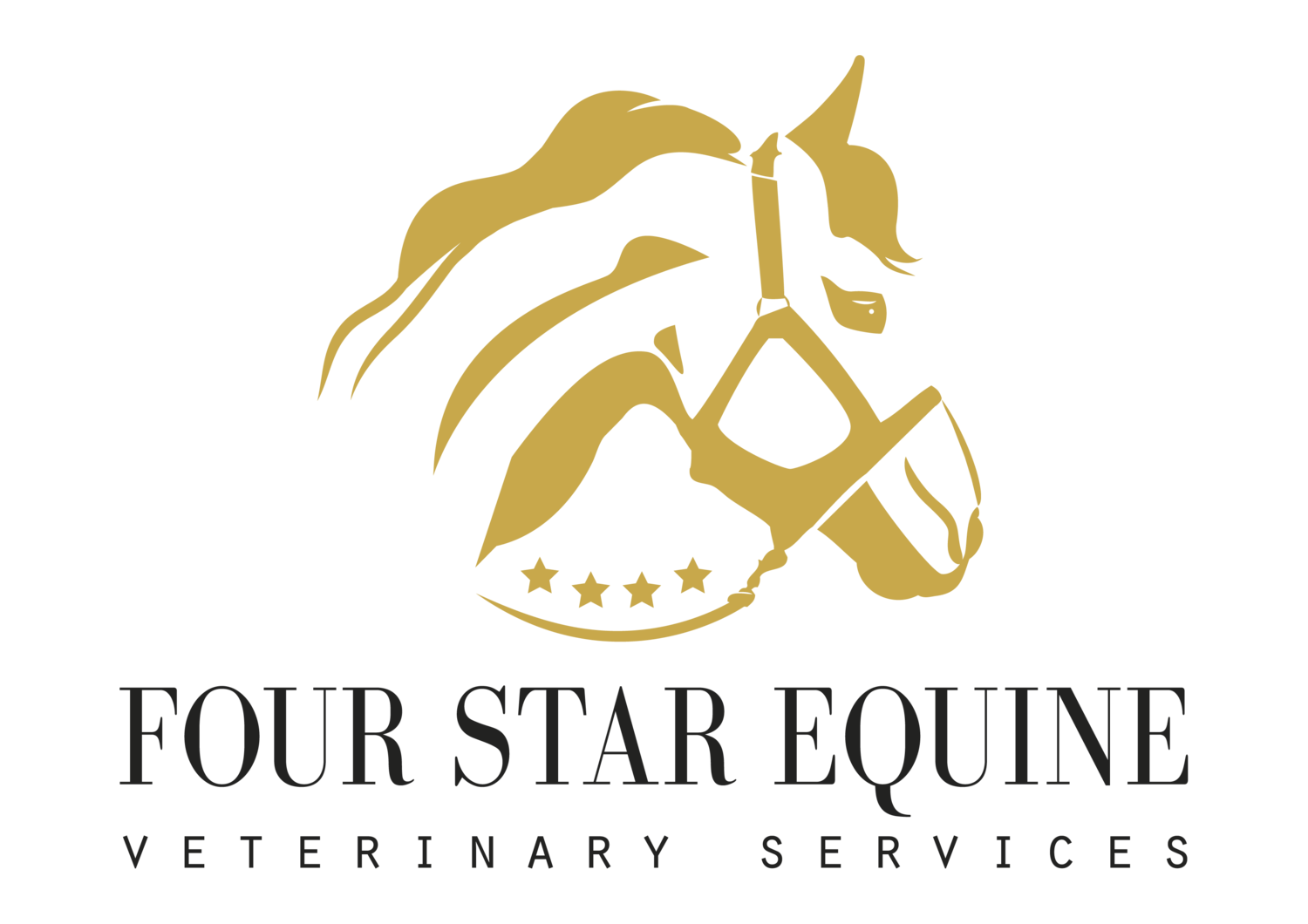 Four Star Equine PLLC