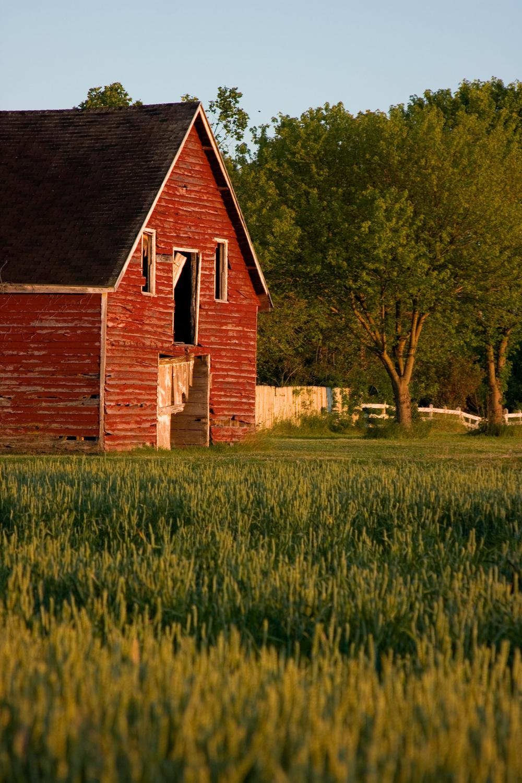 Barn&Field