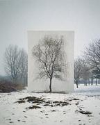 Tree #3, Myoung Ho Lee, 2006