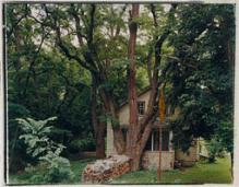 Treehouse, Freese Road, Varna, New York, Rhea Garen, 1993