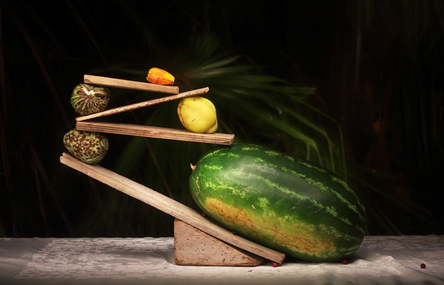 © Marian Drew. Watermelon and Quince in Balance, 2014. Courtesy Queensland Centre for Photography.