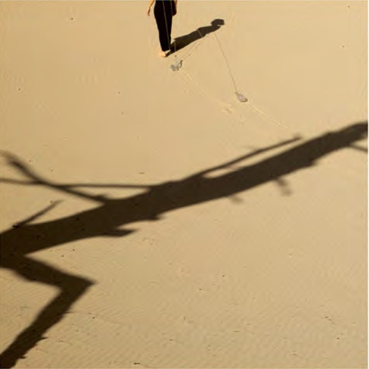 Gazelle Samizay   Shadow Walking