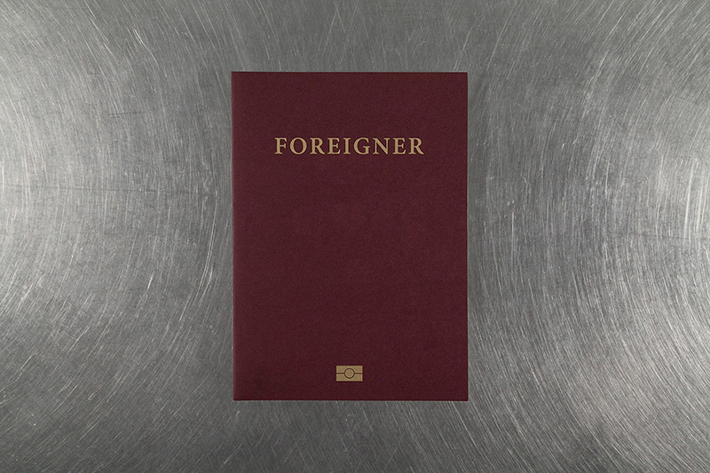 Foreigner: Migration into Europe 2015 - 2016     Daniel Castro Garcia