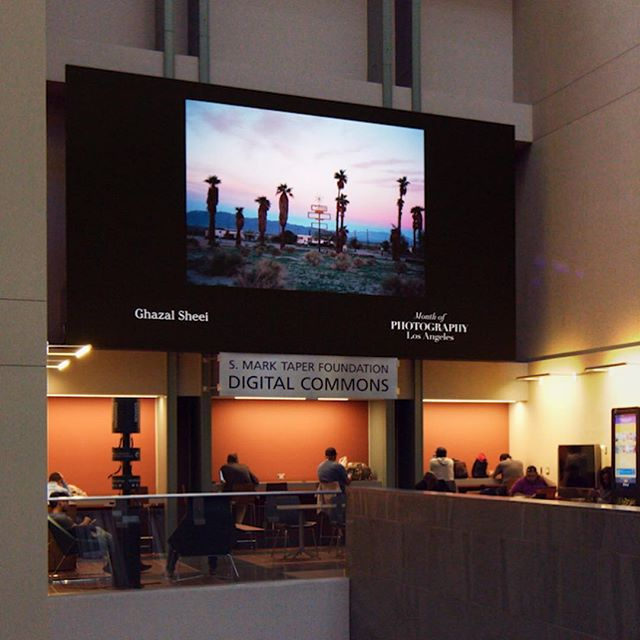 Happy Earth Day from the Video Wall at the Tom Bradley Wing of the Los Angeles Central Library!  APRIL 1 - 28: ENVIRONMENT FEATURING WORK BY ALFREDO ESPARZA CÁRDENAS, CHIARA ZONCA, CODY COBB, DIRK KRUELL , GHAZAL SHEEI, HANS GEORGE ESCH, MATTHEW PORTCH, AND ROLLENCE PATUGAN  630 W 5th St, Los Angeles, CA 90071  Projections run at the top of every hour.  Photos by: @ghazalsheei @dirkkruell @shadowontherun