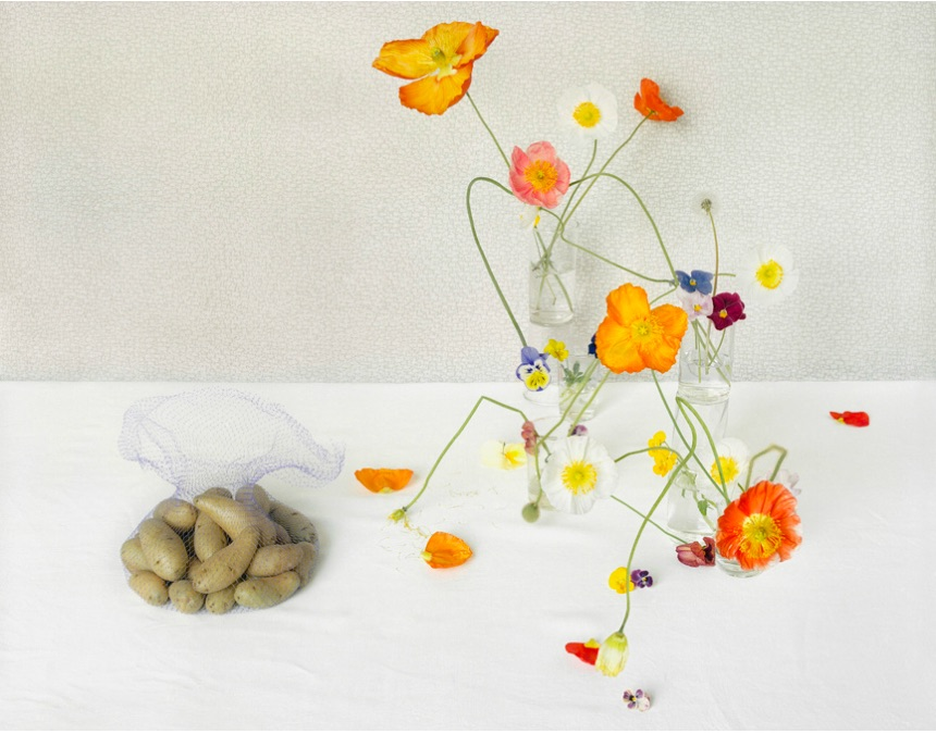David Halliday,  Potatoes and Poppies,  2010, Archival pigment print, Edition of 10, 25 x 32 inches