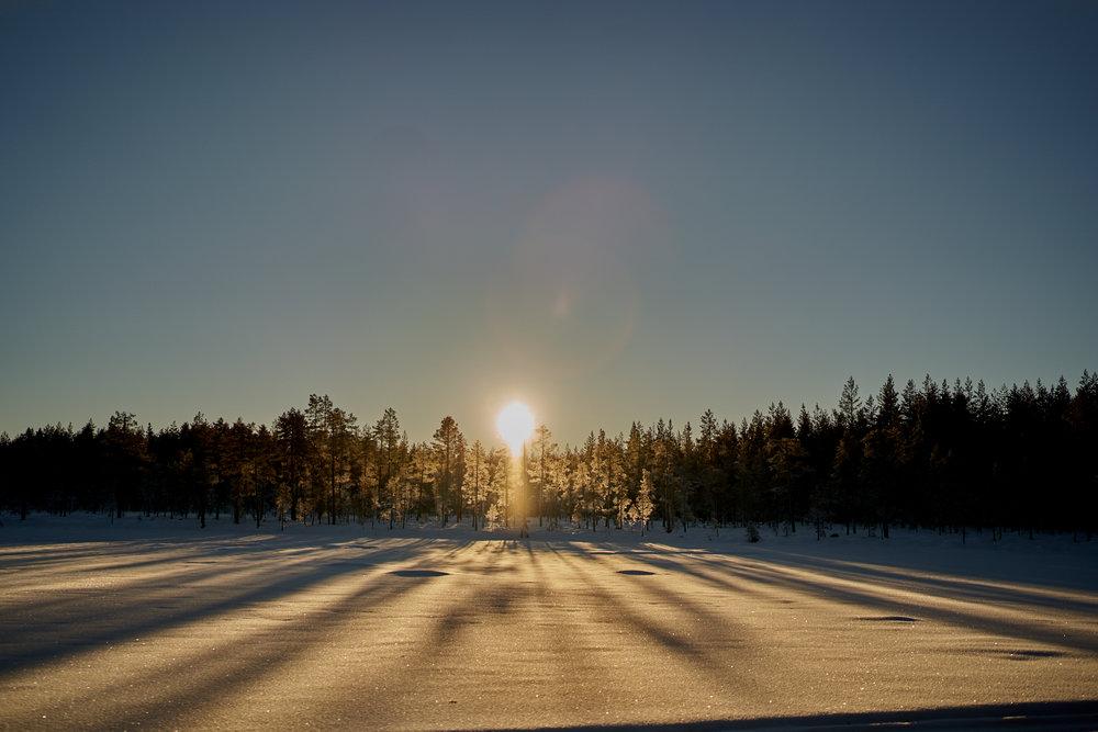Zweden-2018-NIK01736.jpg
