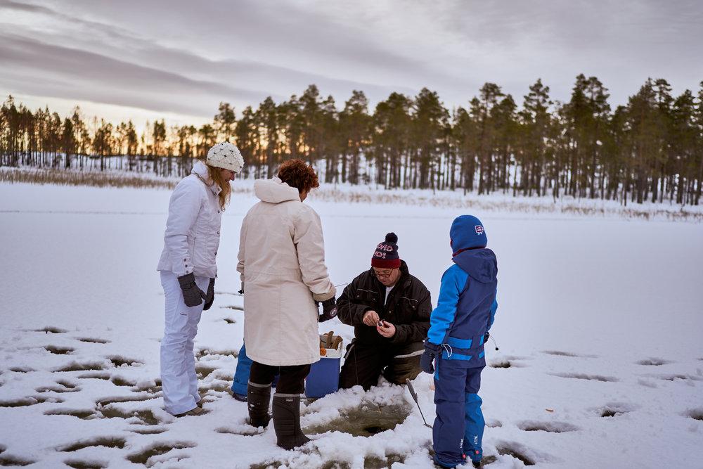 Zweden-2018-NIK01570.jpg