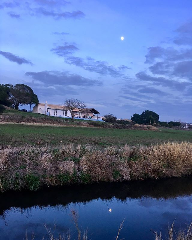 Fields| Biggest moon 2018 #newyear #casadacomporta #comporta #2018