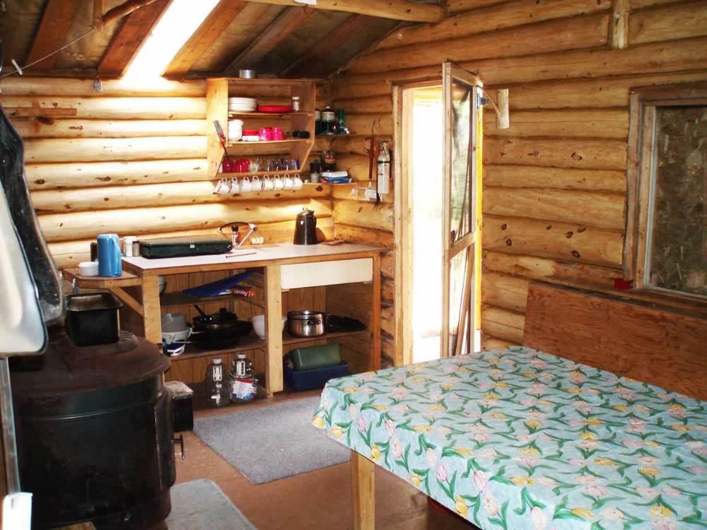 Gataga-Cabin-June-2006-(1).jpg